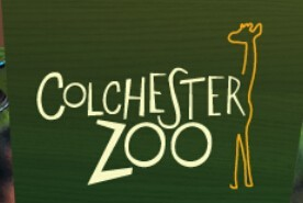 Colchester Zoo Promo Code 10% Off