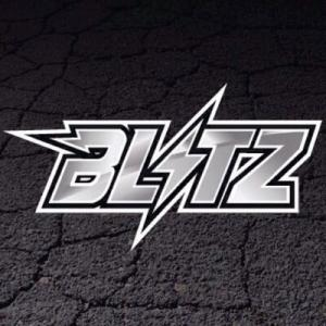 Project Blitz Free Shipping Code