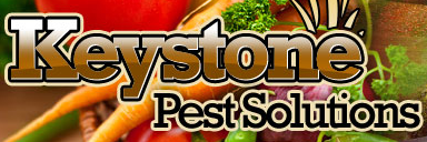 Keystone Pest Solutions Free Shipping