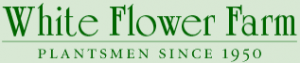 White Flower Farm Free Shipping Code
